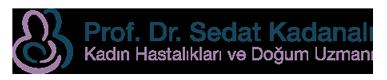 Prof. Dr. Sedat Kadanalı | Kadın Hastalıkları ve Doğum Uzmanı | Tüp Bebek Tedavisi
